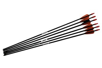 """Picture of Barnett Junior Archery Arrows 26"""" Pack of 6"""